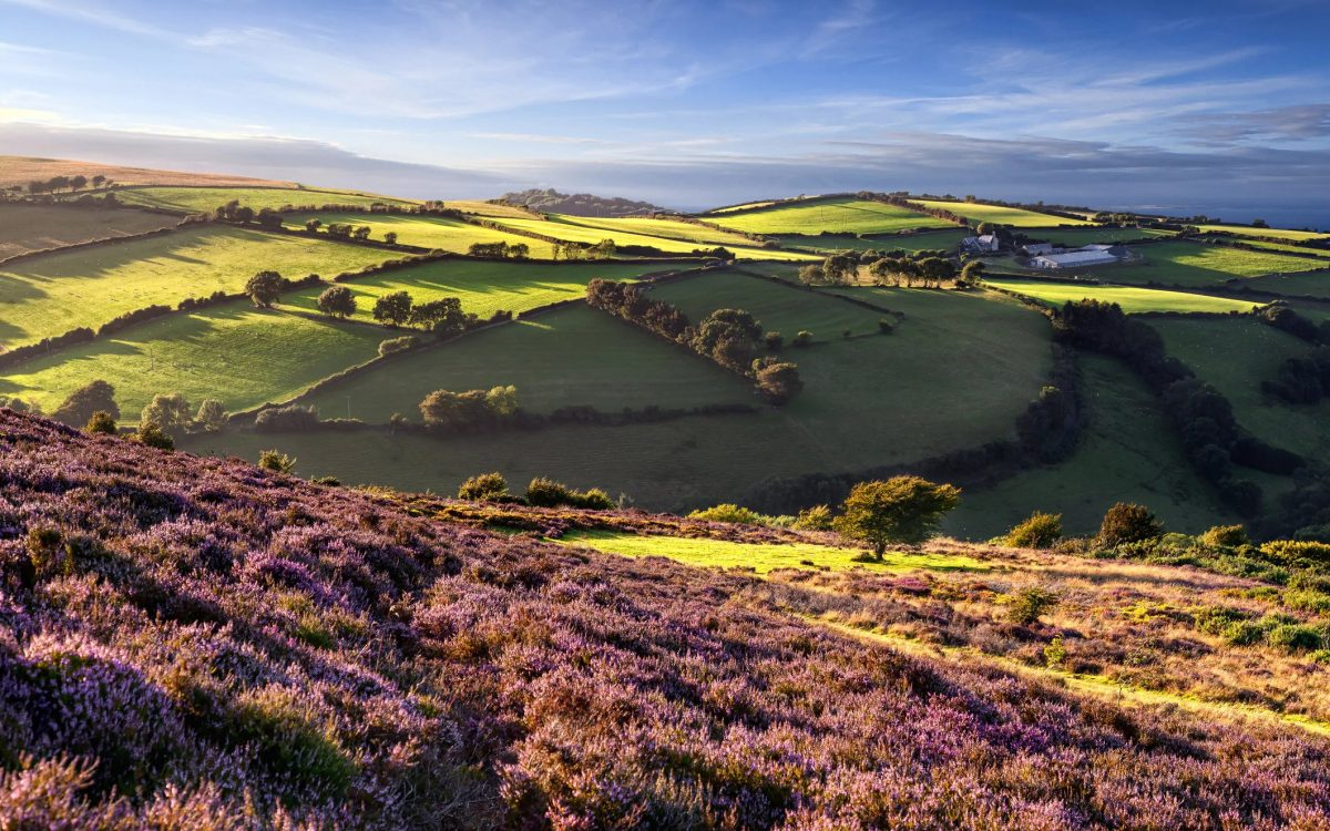 7 of the best UK literary walks